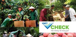 VNPT Check giải pháp hiệu quả giúp doanh nghiệp ngăn chặn hàng giả